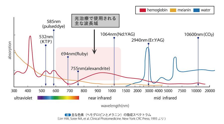 IPL治療(フォーマα)波長による吸収特性