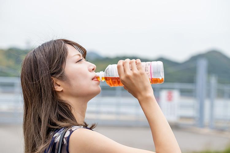 痩美茶の服用方法 1日の摂取量